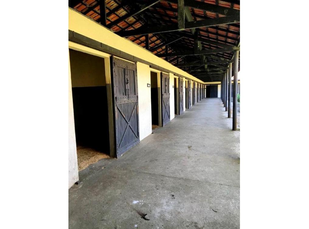 Haras à venda - Miringuava - São José dos Pinhais/PR