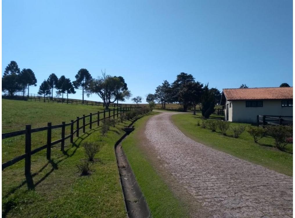 Haras à venda - Miringuava - São José dos Pinhais - Junto de Curitiba